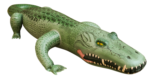 Jet Creation Alligator