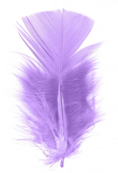 Goodtimes Schmuckfedern ca. 6/8cm lavendel 100 Gramm