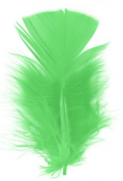 Goodtimes Schmuckfedern ca. 6/8cm hellgrün 100 Gramm