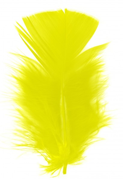 Goodtimes Schmuckfedern ca. 6/8cm gelb 100 Gramm