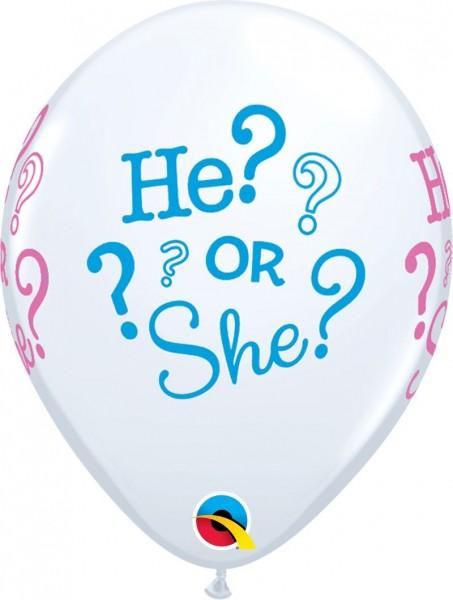 "Qualatex Latexballon HE? OR SHE? 28cm/11"" 25 Stück"